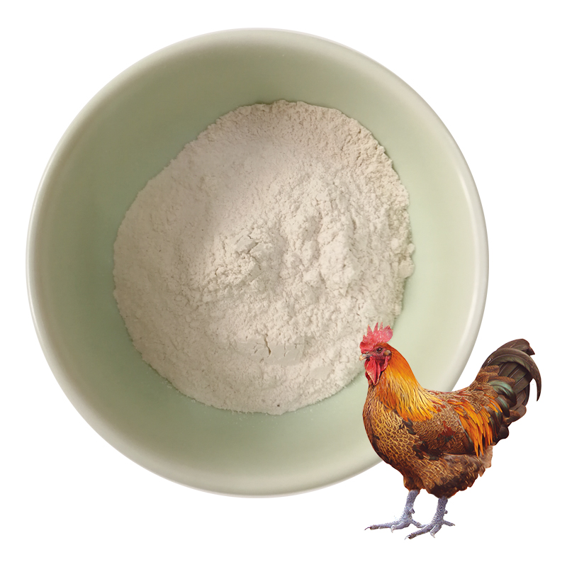 Poultry feed supplement bile acid